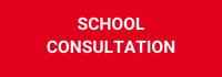 School Consultation-1