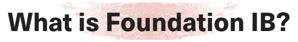 foundation ib-1